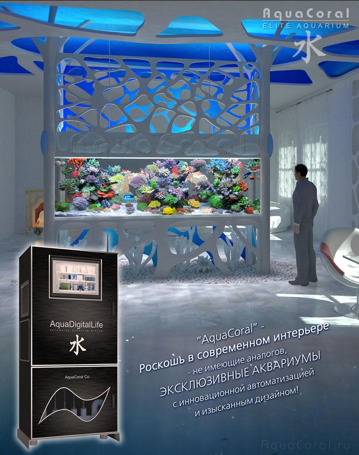 Революция в аквариумистике   полностью автоматизированный аквариум