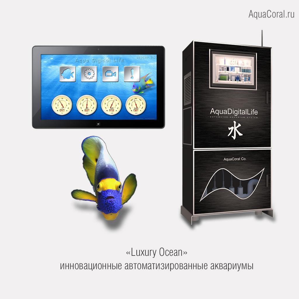 «AquaCoral: инновационные автоматизированные аквариумы»